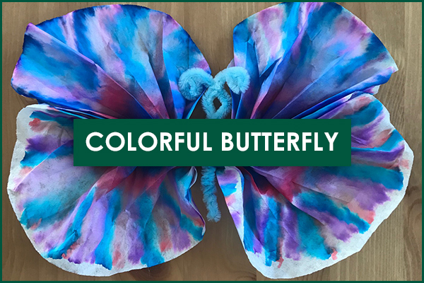 Colorful Butterfly Craft