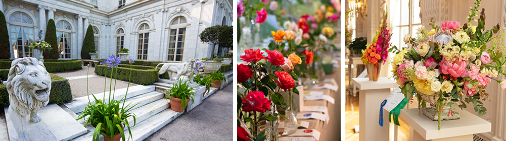 Montage of Rosecliff & flower images