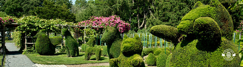 green animals topiary garden newport mansions - Garden Animals